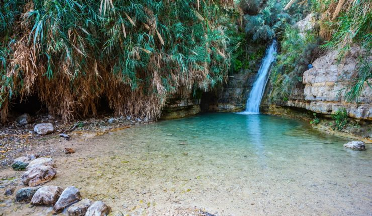 Beautiful waterfall and small scenic lake with clear water. The national park Ein Gedi, Israel