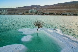 island of salt in the dead sea
